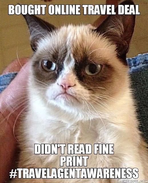 Grumpy Cat Travel Memes