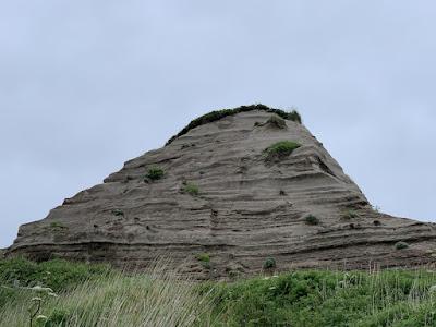 変わった紋様の岩