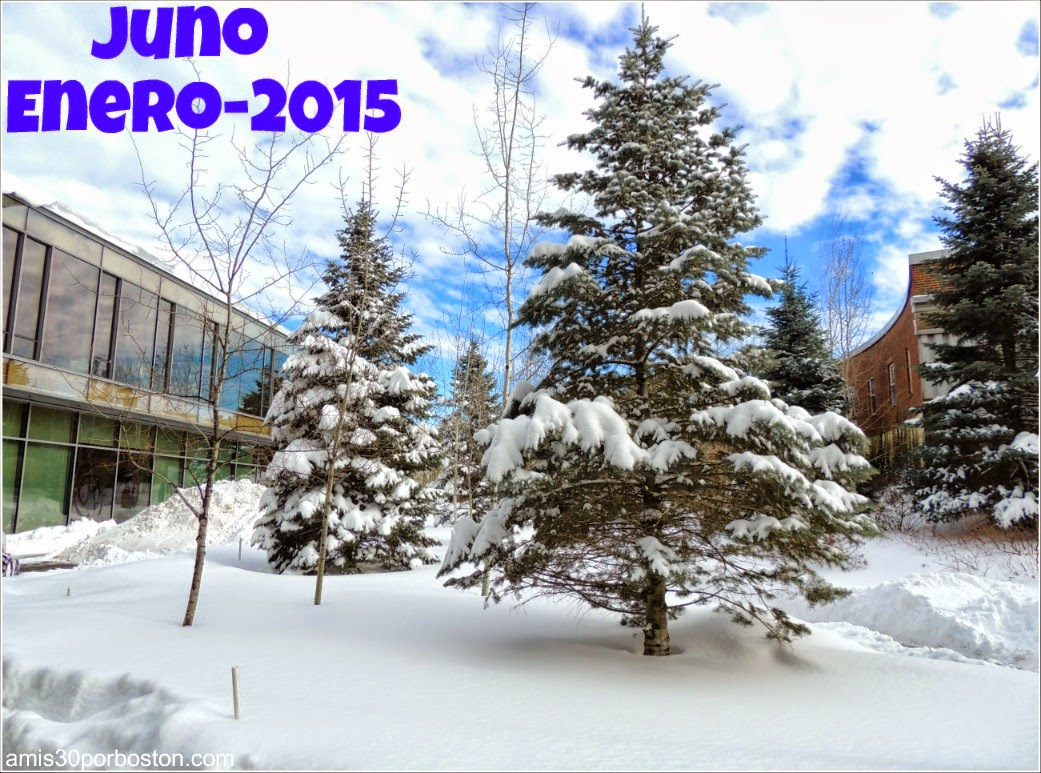 Juno: La primera Snow Emergency del 2015