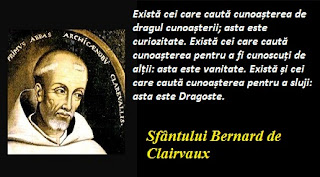 Cele 8 versete ale Sfântului Bernard de Clairvaux