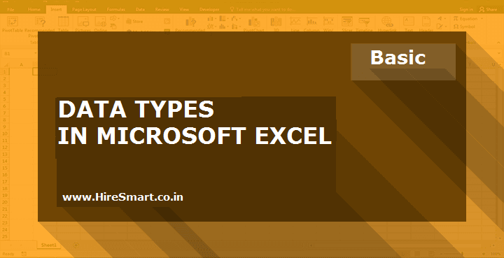 Data Types In Microsoft Excel