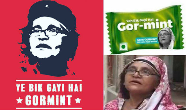 gormint dadi, viral video