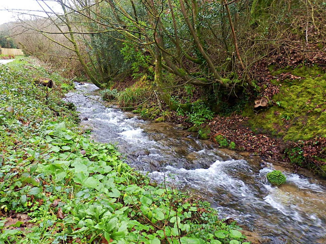 Gover Stream, Gover Valley, Cornwall