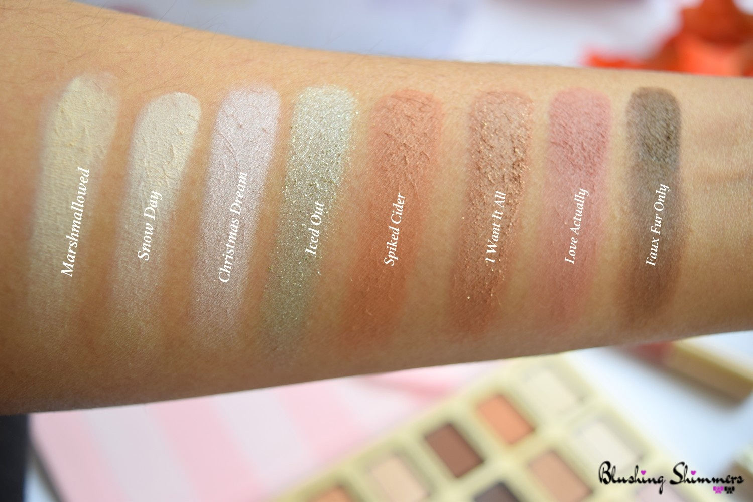 TOO FACED Boss Lady Beauty Agenda swatches