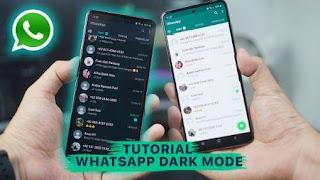 اسهل, طريقة, لتفعيل, وتشغيل, الوضع, المظلم, الداكن, للواتساب, WhatsApp