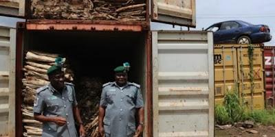 Customs Seizes N15billion Worth Of Donkey Skin In Lagos