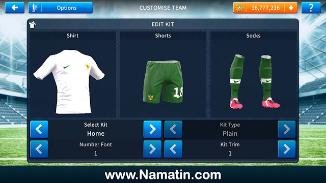 Skin Dream League Soccer Timnas Indonesia