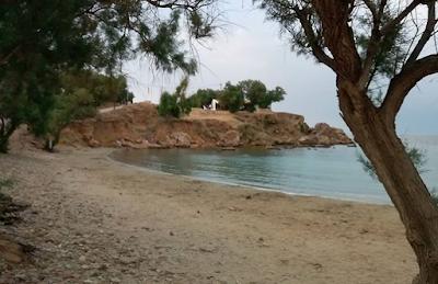 """""""Ιγκουάνα μπιτς"""". """"Αμμώδης ακτή, με αλμυρίκια, σε ορμίσκο στην περιοχή των Αγίων Αποστόλων https://www.instagram.com/p/CCEvGPnH_Uy/?igshid=epnyky00jbm2"""
