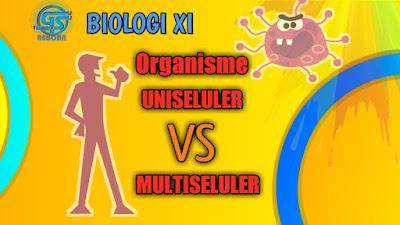mengenal perbedaan organisme uniseluler dan multiseluler