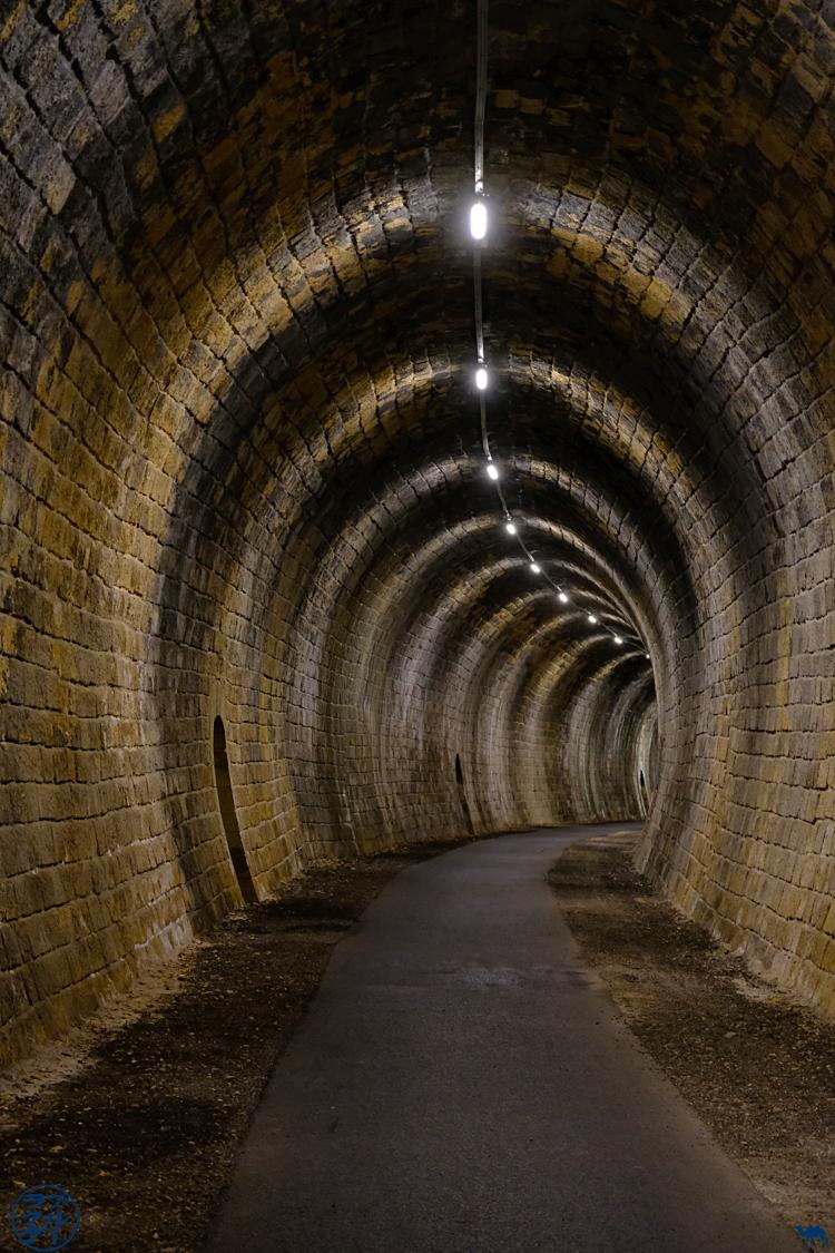 Le Chameau Bleu - Blog Voyage à vélo en Gironde -Tunnel à vélo de la Sauve Majeure
