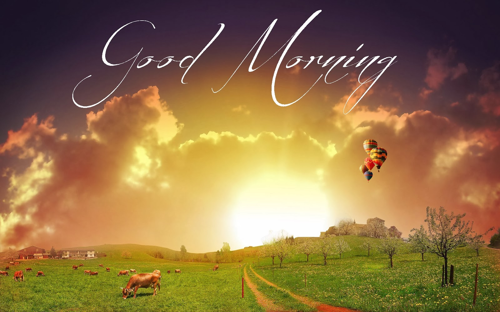 Cute Baby Gud Morning Wallpaper Have A Good Day Good Morning Wishes Messages Festival