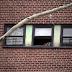 ハーレムのアパートで女性が警察官らの前で窓から飛び降り死亡