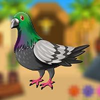 AvmGames Smart Pigeon Esc…