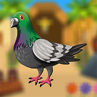 AvmGames Smart Pigeon Escape