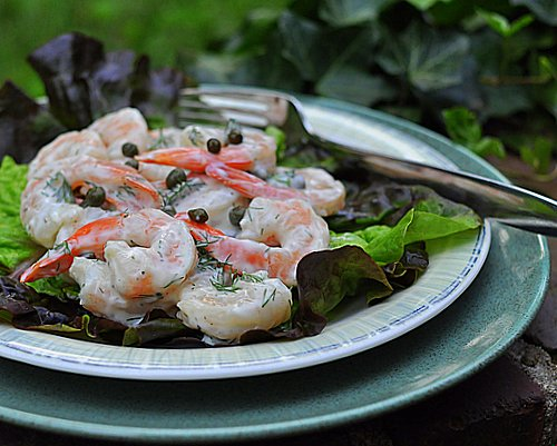 Cold Shrimp with Creamy Dill Sauce & Capers ♥ KitchenParade.com, just cooked shrimp in a light sauce, seasoned with dill and salty capers. Perfect for lunch or a Quick Supper. Weight Watchers Friendly. Low Carb. High Protein.