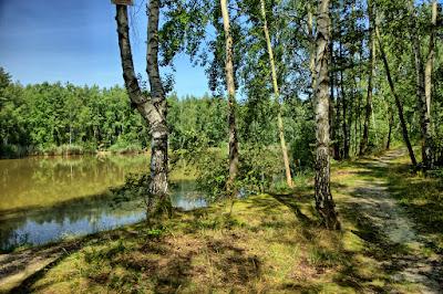Smolnica - Pond Toń