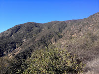View southwest toward the ridgeline of Summit 2843 separating San Gabriel and Roberts canyons, Angeles National Forest