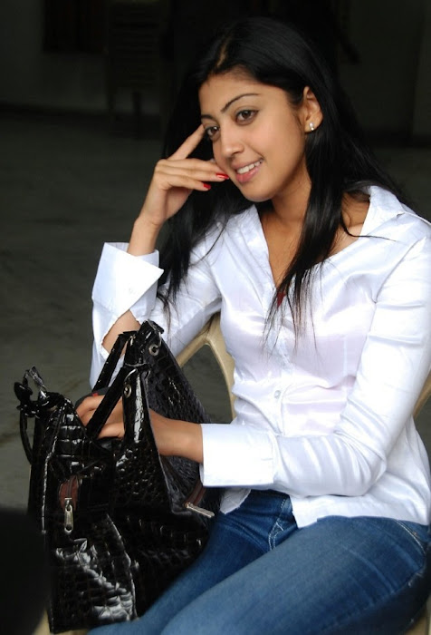 praneetha the girl in white shirtjeans photo gallery