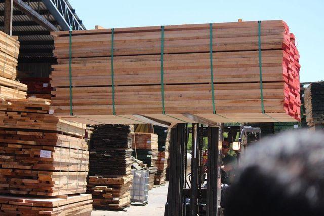 🌲 Exportaciones forestales del primer trimestre se contraen