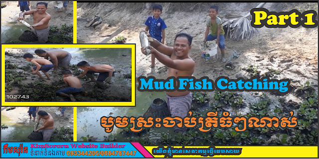 Mud -Fish -Catching -Part- One -and- Two