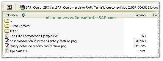 Captura de pantalla del Curso SAP Business One