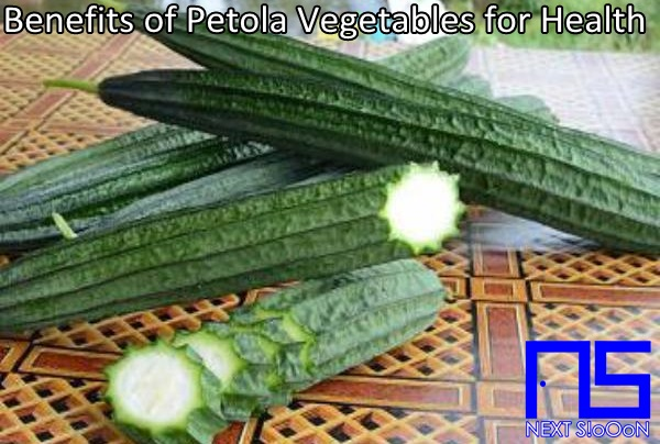Petola Vegetables, What Is Petola Vegetables, Understanding Petola Vegetables, Explanation of Petola Vegetables, Benefits of Petola Vegetables for Health, Benefits of Petola Vegetables for the Body, Nutrition of Petola Vegetables, Vitamins for Petola Vegetables, Vitamins and Petola Vegetables Nutrition for Body Health, Get a Healthy Body with Petola Vegetables, Information about Petola Vegetables, Complete Info about Petola Vegetables, Information About Petola Vegetables, How the Nutrition of Vitamin Petola Vegetables is, What are the Benefits of Petola Vegetables for the Body, What are the Benefits of Petola Vegetables for Health, the Benefits of Petola Vegetables for Humans, the Nutrition Content of Petola Vegetables provides many benefits for body health.