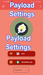 payload settings host
