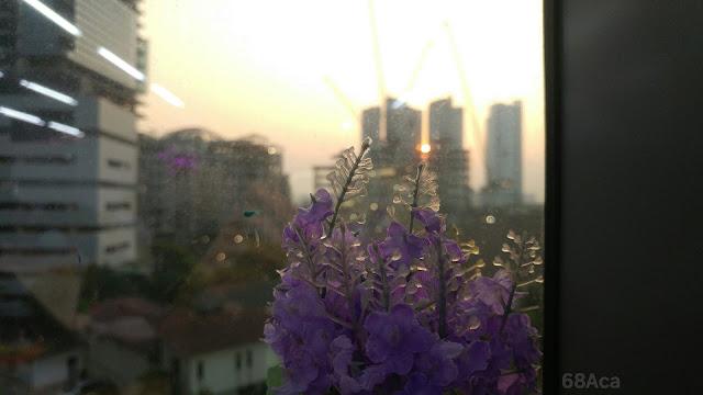 potret bunga dengan latar kota jakarta