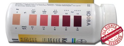 شرح تفصيلي عن الكيتوجينك دايت Ketogenic Diet