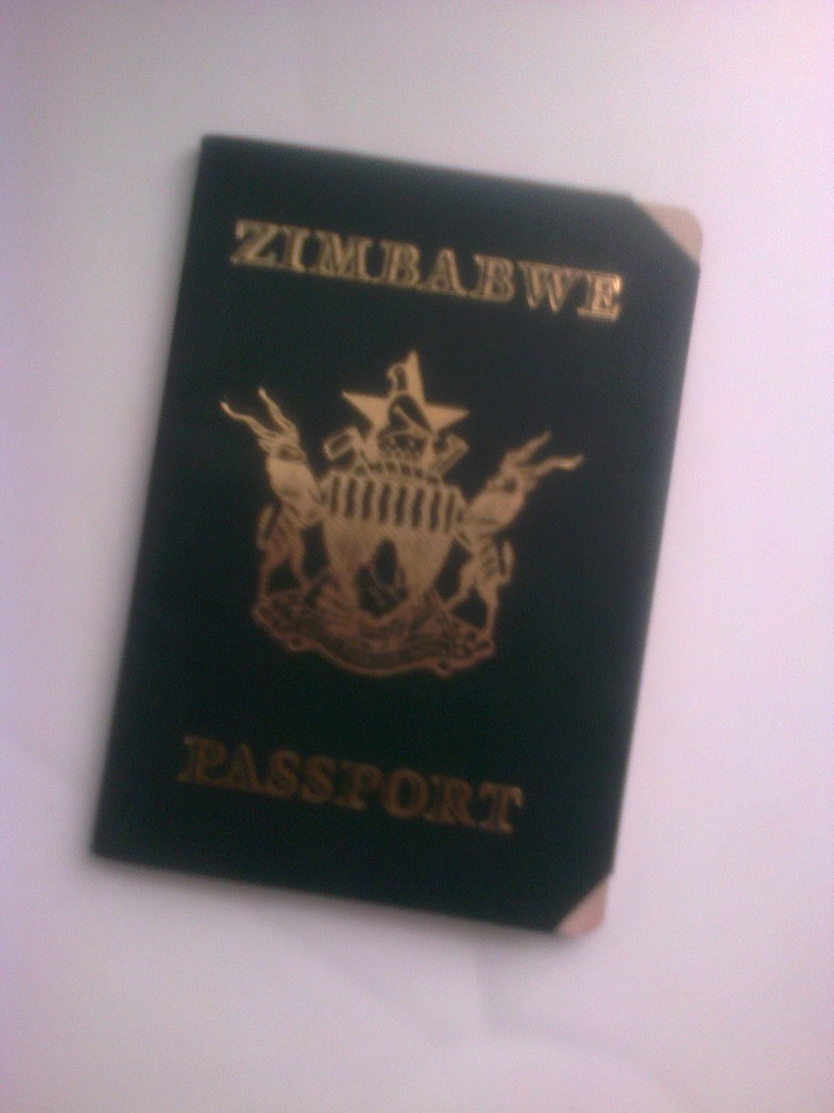 Zimbabwe Names: How to Renew a Zimbabwe Passport at the Zim