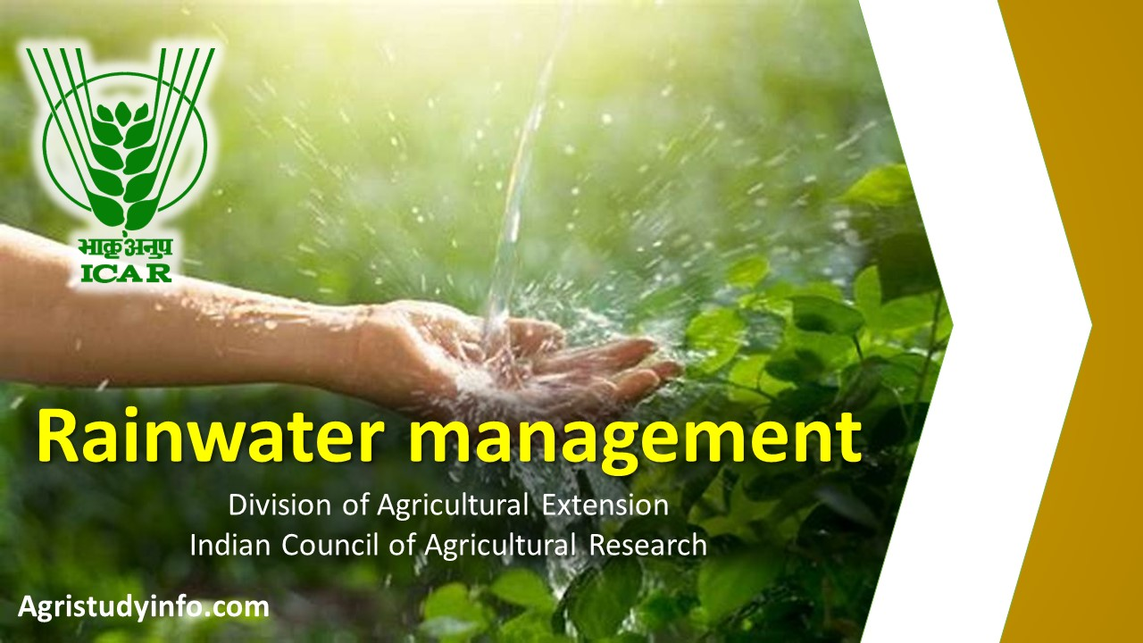 Read more about the article Rainwater management