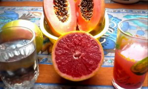 Lose Weight Quickly With Seeds Of Papaya And Grapefruit