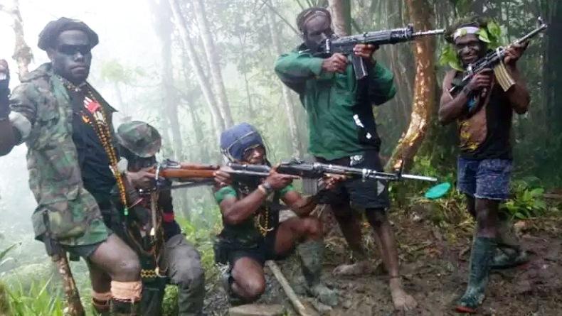 Ketua MPR RI : KKB Sudah Ditetapkan Sebagai Teroris, Pemerintah Jangan Ragu Lagi untuk Bertindak!