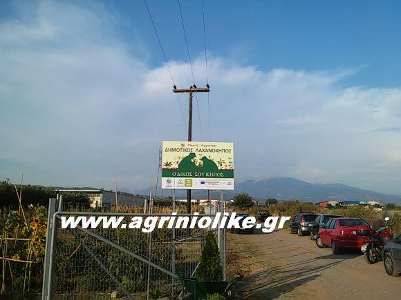 Αποτέλεσμα εικόνας για agriniolike λαχανόκηπος