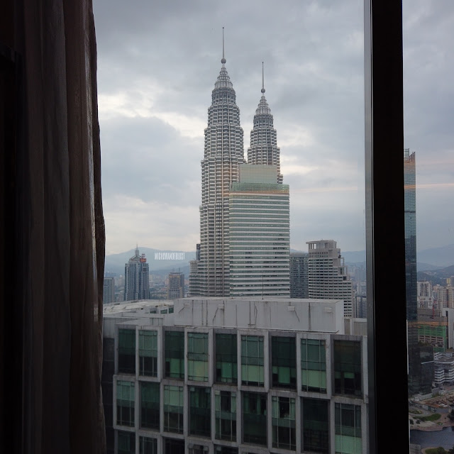 Twin towers hotel view