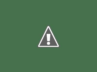 Fotografía de la presentación de Andaina delante del ayuntamiento de Redondela