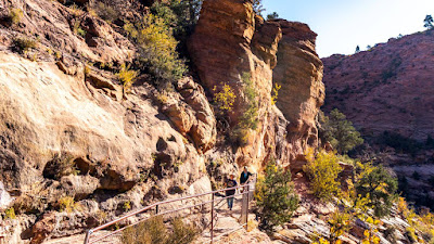 Hiking the Zion Canyon Overlook with friends