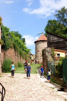 Il circuito dei Tre castelli si snoda tra vigne e colline