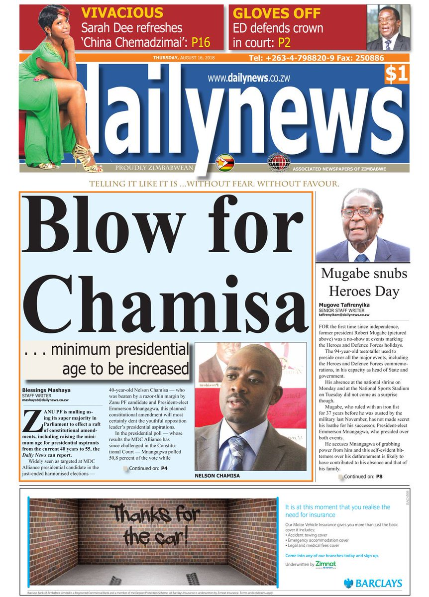 THE 2018 ELECTION MYOPIA BY NELSON CHAMISA BITES BACK