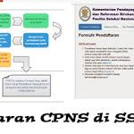 Info Solusi SSCN BKN Tidak Bisa Diakses