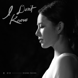 Diana Wang 王詩安 - I dont' know Lyric with Pinyin