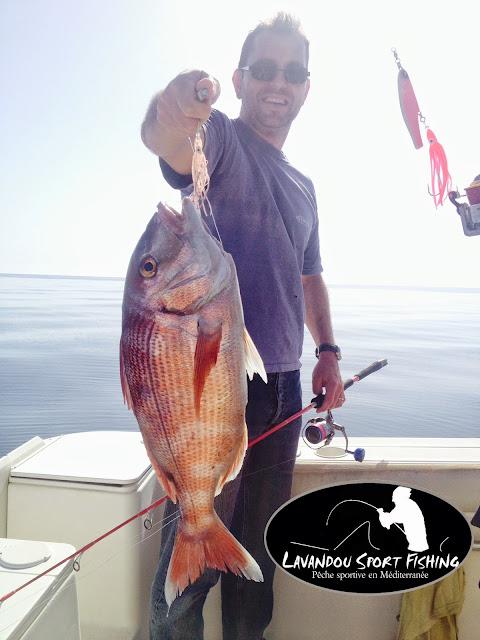 pêche du pagre