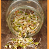 Sprouting Seeds for Survival