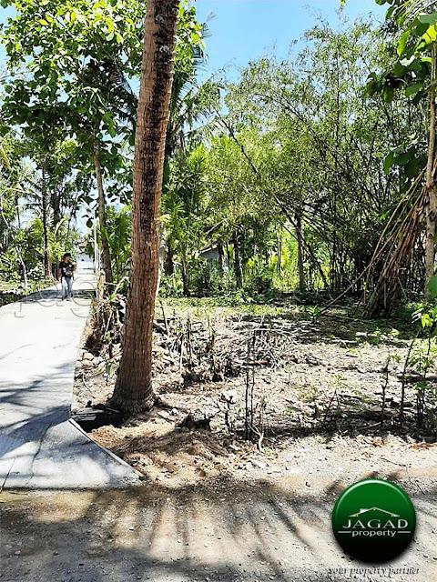 Tanah Kavling dekat Bandara Baru Jogja