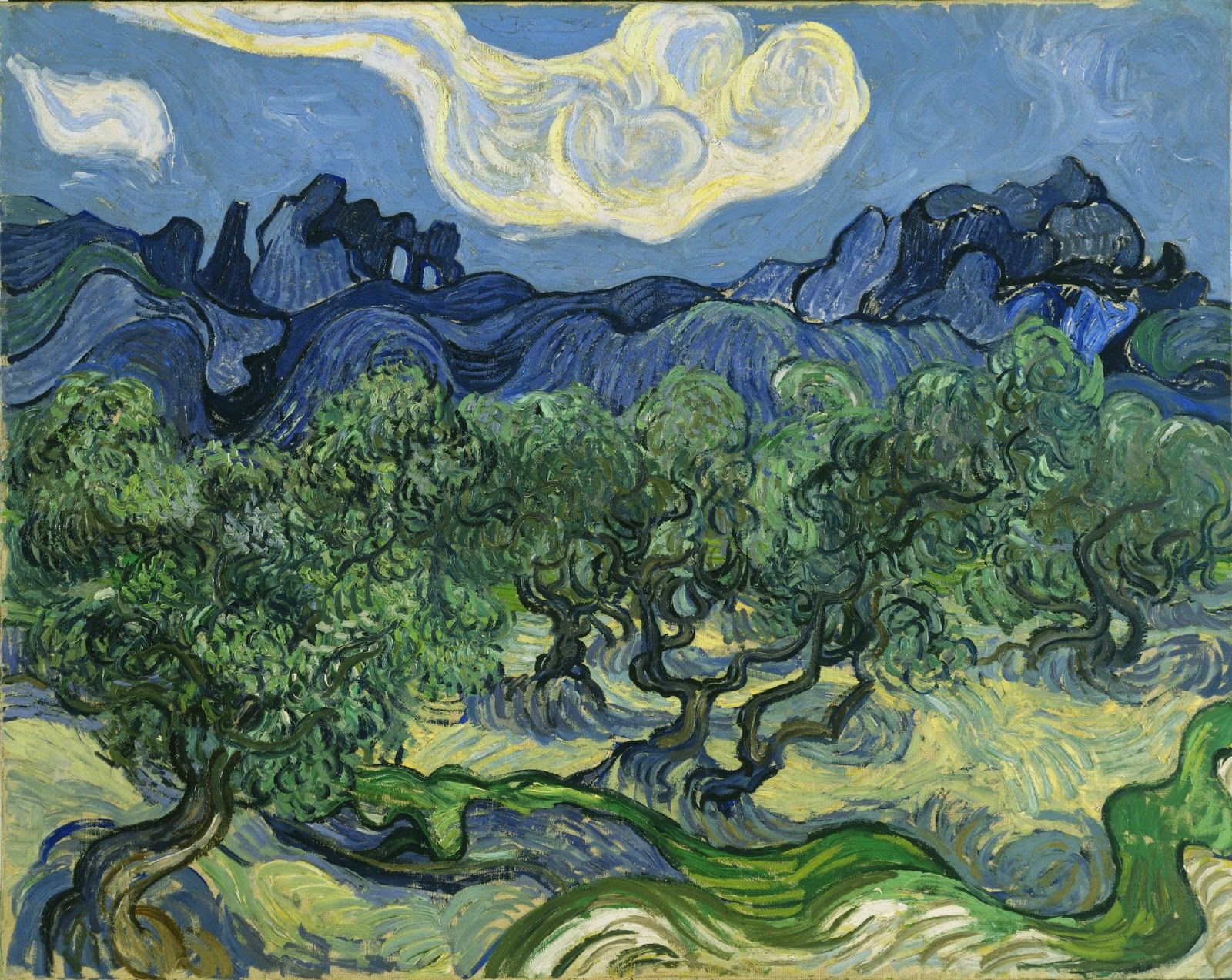 a whispered wish a college essay how van gogh s works differ  vincent van gogh olive trees the alipilles in the background