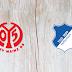 Mainz 05 vs Hoffenheim -Highlights 30 May 2020