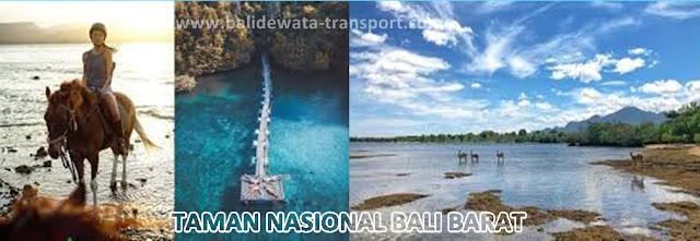 wisata-taman-nasional-bali