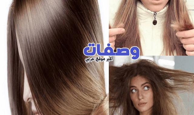 وصفة الشعر الجاف