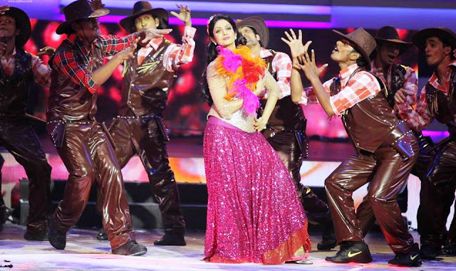 IIFA Awards 2013 : Sridevi's performance