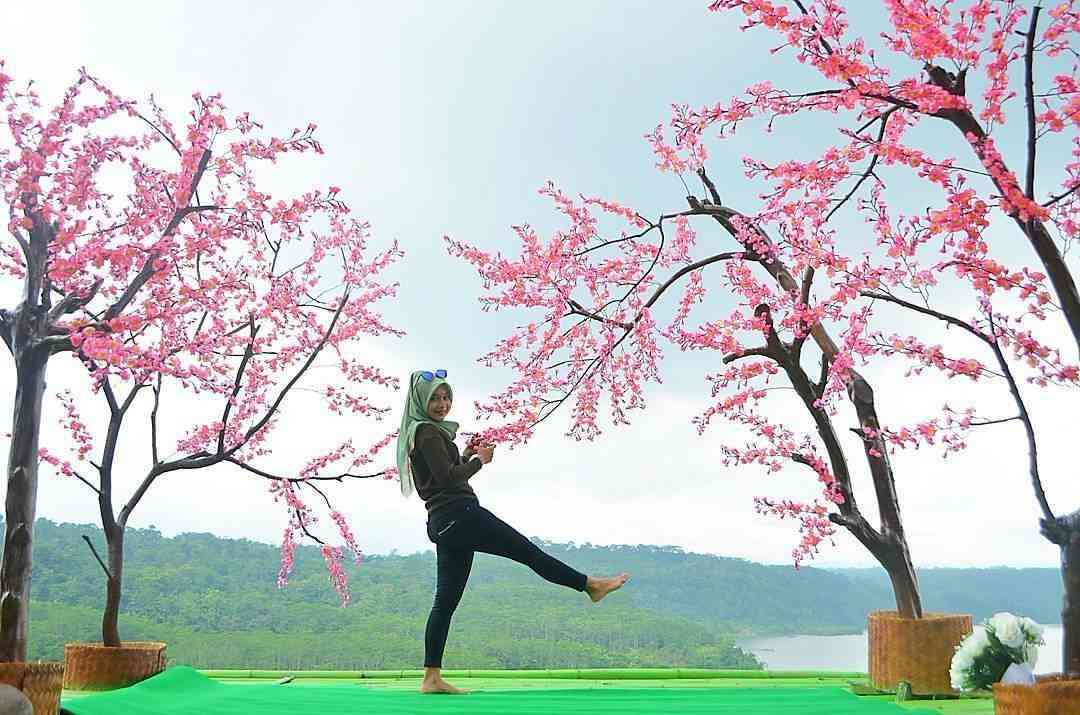 Gua Kreo Jatibarang Spot Foto Di Atas Awan Dinas Pemuda Olahraga